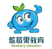 藍莓果學前班