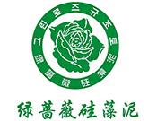 绿蔷薇硅藻泥
