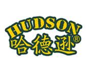 哈德逊瓷砖