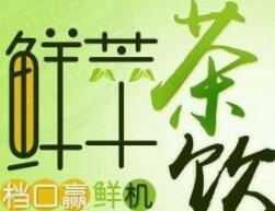 秦宫鲜萃茶