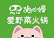 猪小嫚爱野菜火锅