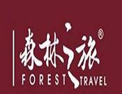 森林之旅地板