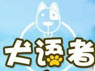 犬语者宠物训导馆