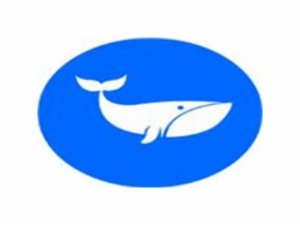 鲸博少儿英语