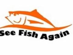 又见鱼烤鱼