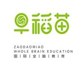 早稻苗全腦教育