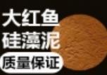 大紅魚硅藻泥