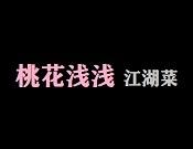 桃花浅浅江湖菜