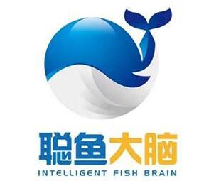 聰魚大腦教育