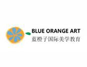 蓝橙子国际美学教育