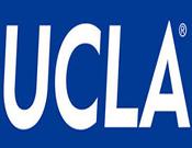 UCLA男裝