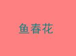 魚春花潮汕海鮮粥