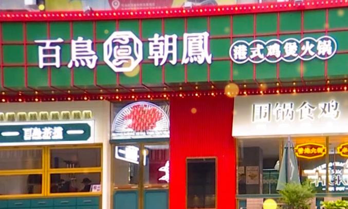 百鳥朝鳳港式雞火鍋招商視頻